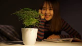 Cyborg Botany: Augmented plants as sensors, displays, and actuators
