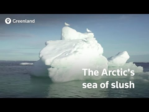 Arctic sea ice hits new low making the future of the Arctic unpredictable