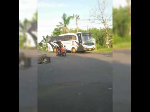 Ayo Numpak Bus Po. Haryanto