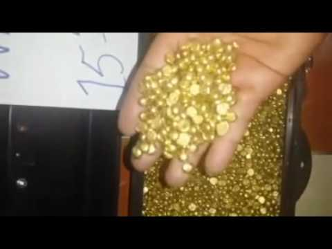 Available Gold Nuggets High Quality Produce In Cameroon Land Of Plenty