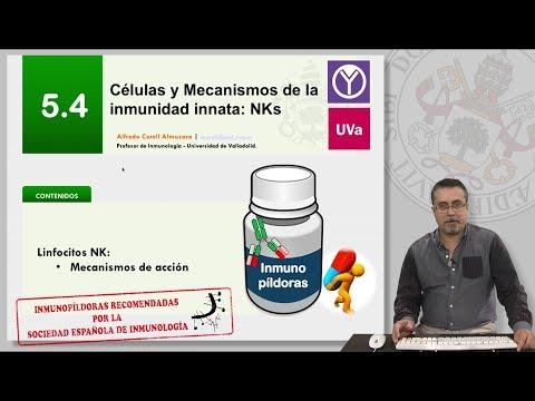 5.4 CÉLULAS Y MECANISMOS DE LA INMUNIDAD INNATA:NKs