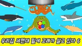 한국어ㅣ우리집 세면대 밑에 고래가 살고 있다 6, 신기한 동물 만화, 동물 이름 외우기ㅣ꼬꼬스토이