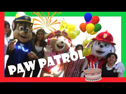 paw-patrol-show---live-real-mascot-video-episode-|-wiwi-shows