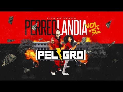 Dj Peligro - Perreolandia VOL 5 (La primera canción se llama BELLAKEO COQUETEO) @DJPELIGROPERU