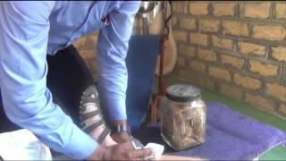 SRI LANKA - 40 - Spice Garden Kosgoda