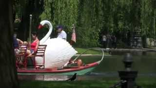Boston Swan Boats & Public Garden