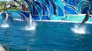 Blue Horizons: Call to Adventure SeaWorld San Diego 5 14 14