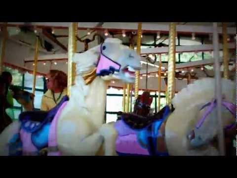 VID01113.MP4 Carousel
