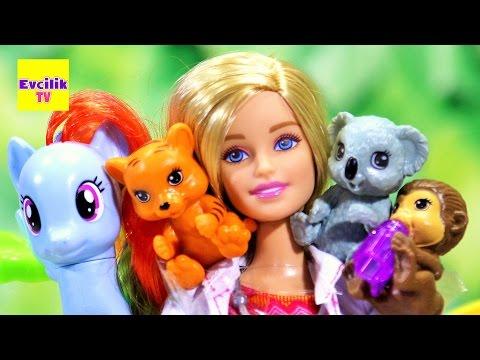 Barbie   My Little Pony Rainbow Dash Fluttershy Veteriner'de   Evcilik TV Barbie Videoları