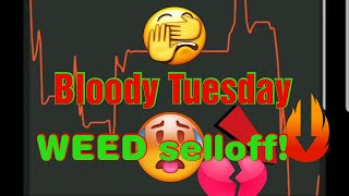 Bloody Tuesday! Down $1700!