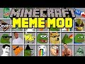 Minecraft MEMES MOD! | SPONGEBOB, PEPE BOY, SHREK, MLG, DOGE, & MORE! | Modded Mini-Game