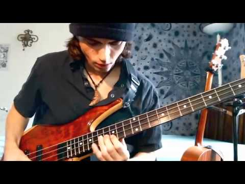 """Cody Wright - """"THE BIRDWATCHER"""" (Vulfpeck) Funk/Fusion/Old School bass solo"""
