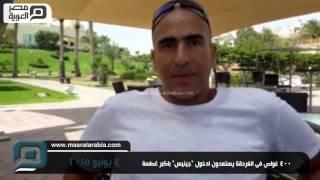 مصر العربية |  400 غواص فى الغردقة يستعدون لدخول
