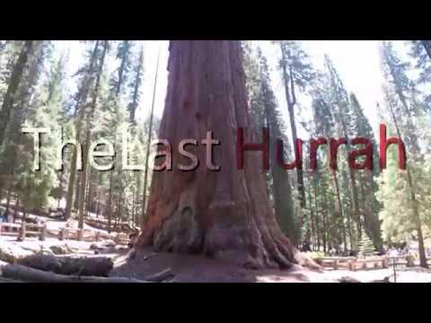 High Adventure 2017- Sequoia National Park