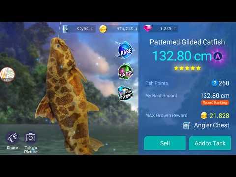 Rare Big Fish Patterned Gilded Catfish Catch Gameplay 1 Fishing Strike