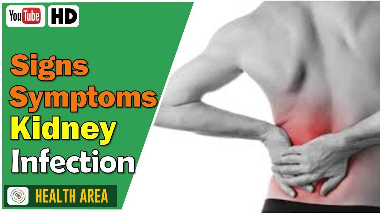 9 Kidney Infection Signs And Symptoms Youtube