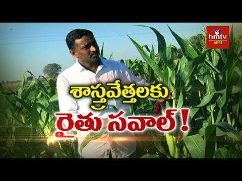 Young Farmer Muralidhar Success Story | Natural Farming | hmtv Agri