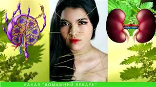 Крапива для похудения. Рецепт от Джилиан Майклс - Домашний лекарь - выпуск №32