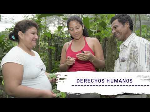 Sonoviso: Política Migratoria Integral