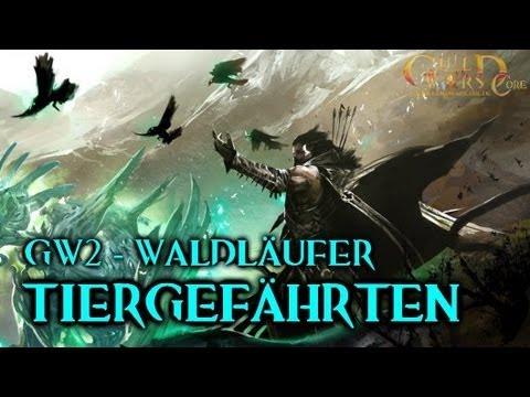 Niedriger Verkaufspreis begehrteste Mode Einkaufen ★ Guild Wars 2 Waldläufer-Guide: Tiergefährten zähmen   GuildWarsCore.de