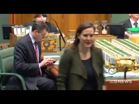 Kelly O'Dwyer bungle: Michael Keenan in charge when Turnbull Govt voted against itself
