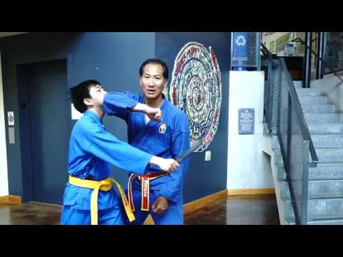 Vovinam Knife counters.