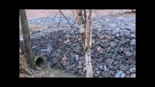 видео Озеленение склонов. Ландшафтныйдизайн участка насклоне