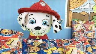 Patrulla canina español:Marshall fiesta cumpleaños feliz cachorro bombero.Nuevos videos paw patrol