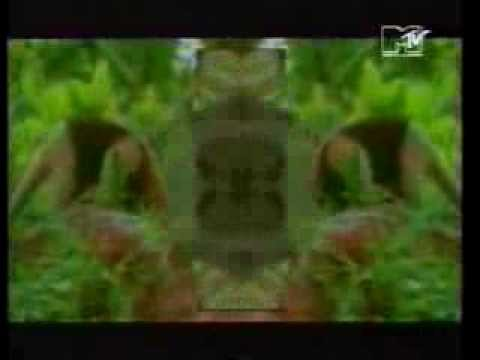 Sven Väth - Ritual Of Life (Tribal Acid Mix Edit) (Official Video)