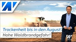 Heftige Sommerprognose 2020: Dürre bis August! Waldbrandgefahr erreicht nun höchste Warnstufe 5!