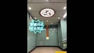 猫の溢れる駅ー横浜市営地下鉄ブルーライン踊場駅