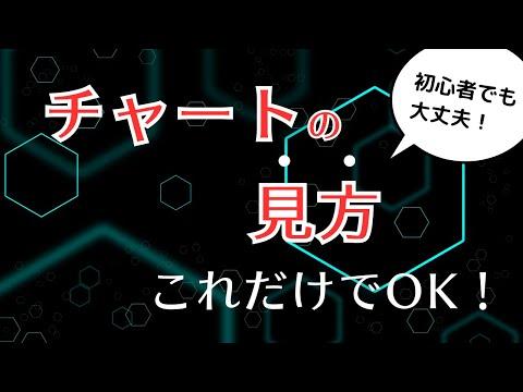 【株式投資】チャートの基本的な見方【超初心者向け】