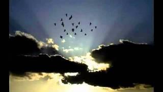 sad sad very sad heart touching Urdu nazam song.flv shams