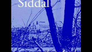 Watch Siddal When The Wolf Comes video