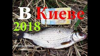 Рибалка на фідер ловля плотви навесні на річці Дніпрі в Києві 2018