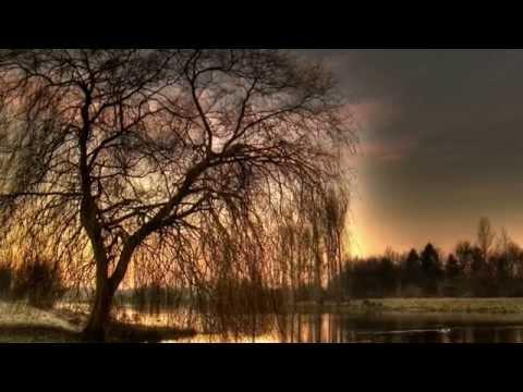 Fűz a tóparton / Szabó Lőrinc / Sztankay István