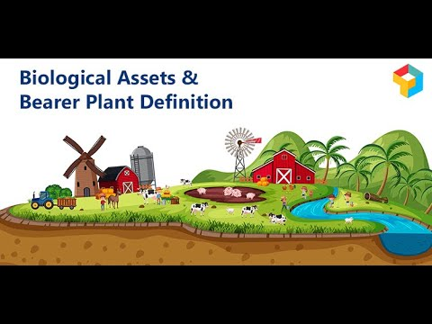 Biological Assets & Bearer Plant Definition |Accounting Standards |CA Raja Classes