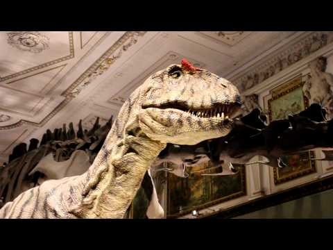 Naturhistorisches Museum Vienna - Dinosaur!