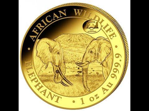 Preview: 2020 Design of the Somalia Elephant