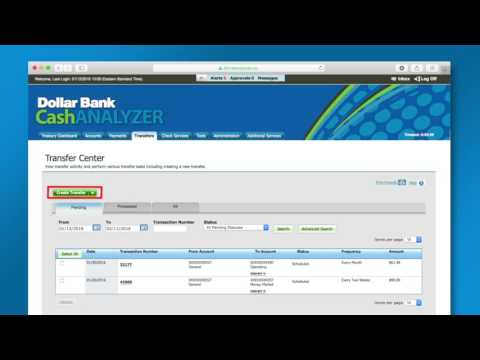 Dollar Bank CashANALYZER® Management System