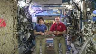 ISS Crew Discusses Life in Space