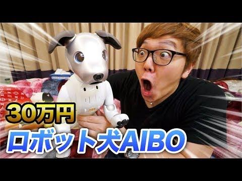 【30万円】我が家に犬がやってきた!【AIBO】
