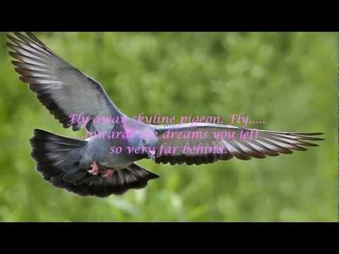 Elton John - Skyline Pigeon (with lyrics)