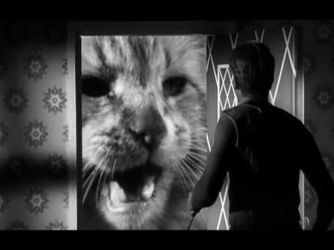 321) The Incredible Shrinking Man (1957) - YouTube