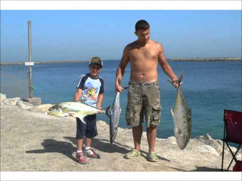 How to catch ballyhoo for Bait