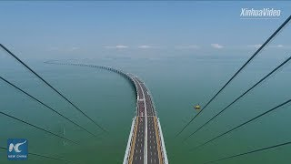 World's longest sea bridge! Hong Kong-Zhuhai-Macao Bridge to boost logistics