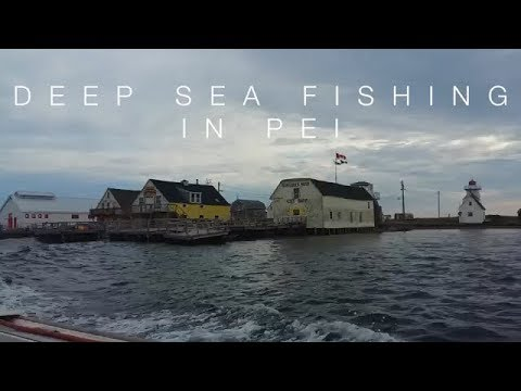 Deep Sea Fishing In PEI