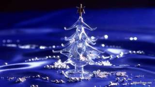 Chúa Đến Trong Đời | Nhạc Thánh Ca | Nhạc Noel