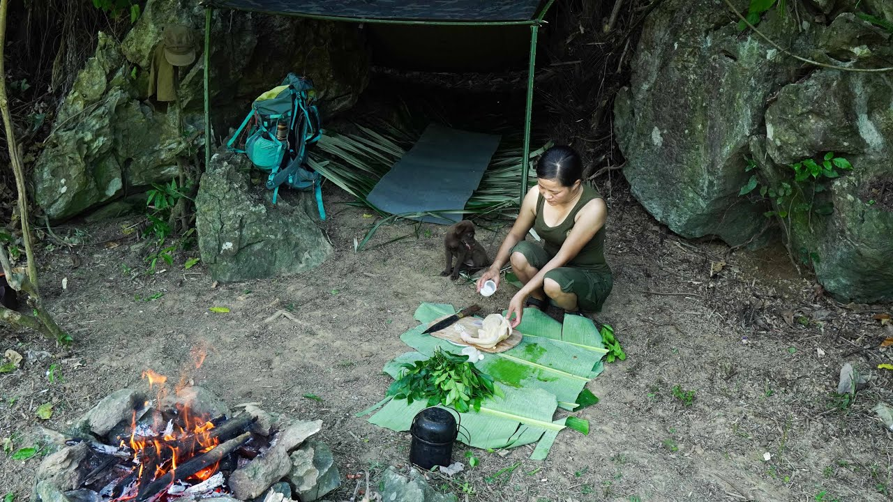 Solo Bushcraft Overnigh - Cute little companion, A trip to find forest specialties - Part 1