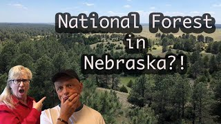Halsey National Forest iฑ Nebraska's Sandhills Region